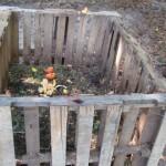 outside compost bin