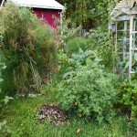 Post permaculture