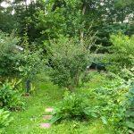 Garden Hacking secrets