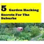 5 great garden hacks for the suburbs